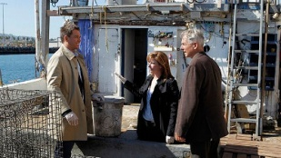 NCIS 11x06 : Oil and Water- Seriesaddict